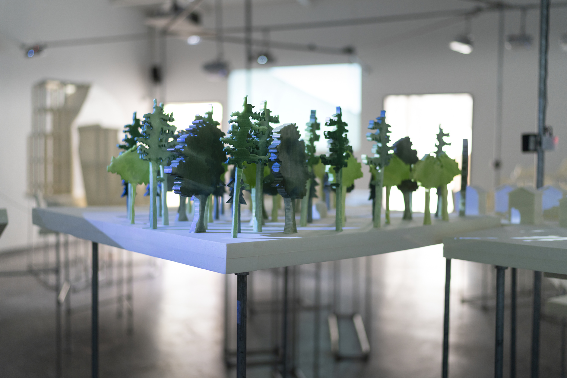 EXPERIMENTA - La Biennale, le Salon, Le Forum Arts Sciences 2020